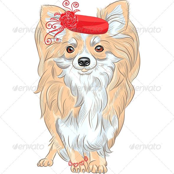 Fashion Dog Chihuahua Breed Smiling - Animals Characters