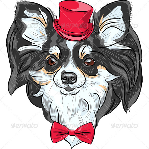 Vector Hipster Dog Chihuahua Breed Smiling - Animals Characters