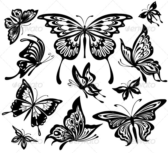 Set of Black and White Butterflies - Animals Characters