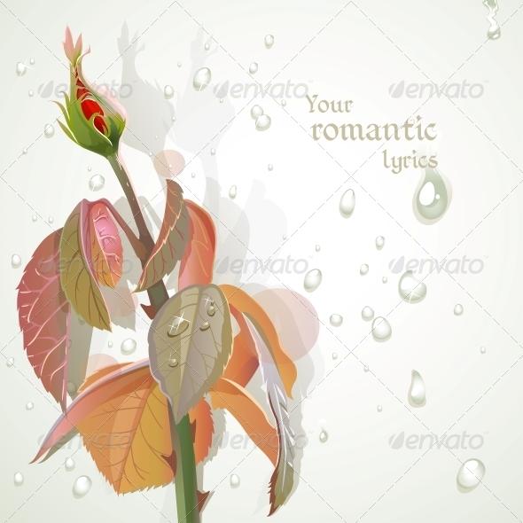 Rosebud  - Flowers & Plants Nature