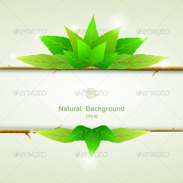 Natural Green with Paper for Background  - Flowers & Plants Nature