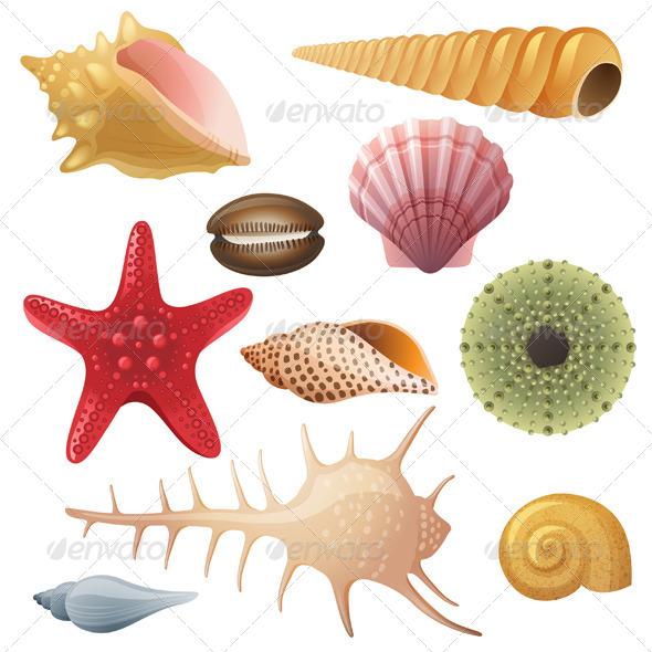 Seashells Icons - Miscellaneous Vectors