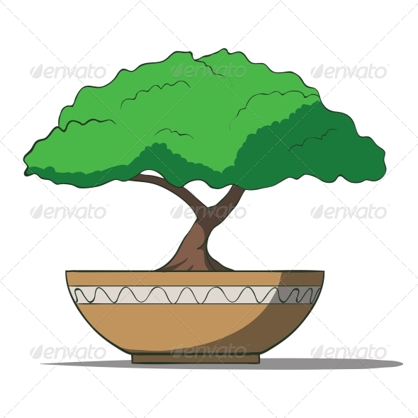 Bonsai Tree - Organic Objects Objects
