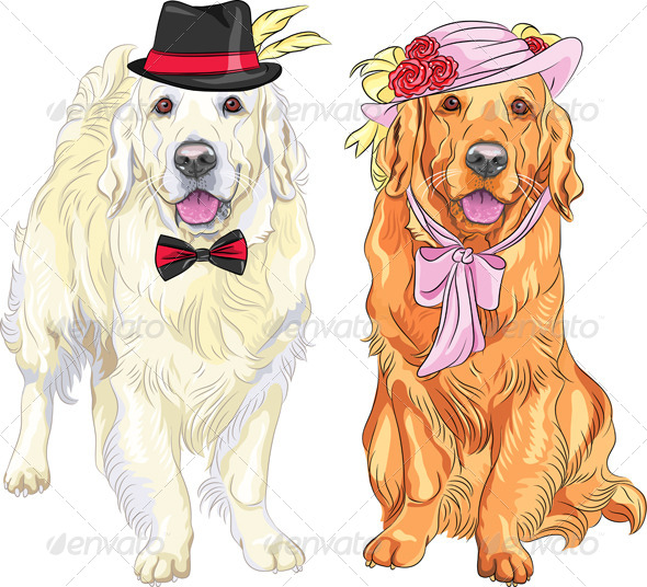 Vector Hipster Pair of Dogs Labrador Retriever - Animals Characters
