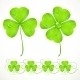 St. Patrick's Day Green Clover - GraphicRiver Item for Sale