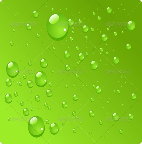 Water Drops on Green Background - Miscellaneous Seasons/Holidays