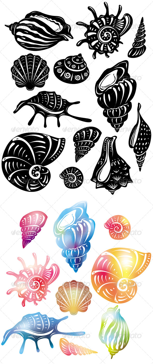 Set of Decorative Shell - Decorative Symbols Decorative