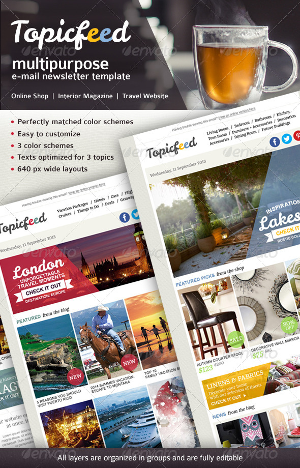 Topicfeed Multiporpose E-mail Newsletter - E-newsletters Web Elements