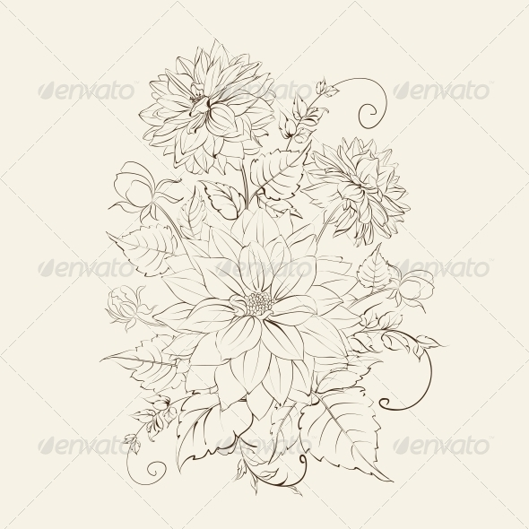 Chrysanthemum Isolated Design. - Flowers & Plants Nature