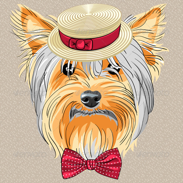 Hipster Dog Yorkshire Terrier - Animals Characters