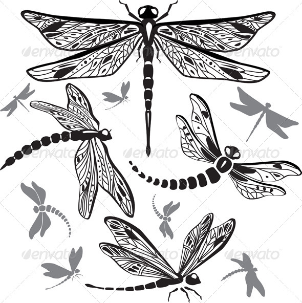 Set of Decorative Dragonflies - Animals Characters