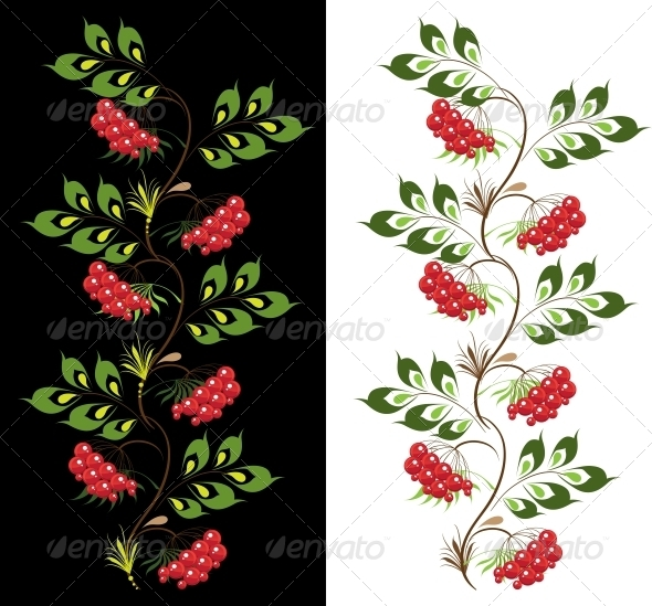 Delicate Ornament Viburnum - Flowers & Plants Nature