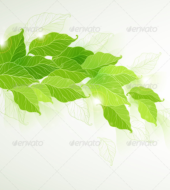 Background with Green Leaves - Flowers & Plants Nature