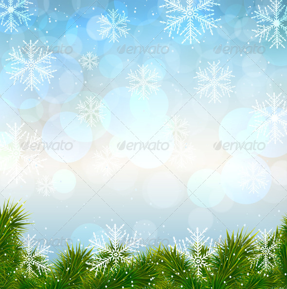 Christmas Snow Background with Fir Twigs - Christmas Seasons/Holidays
