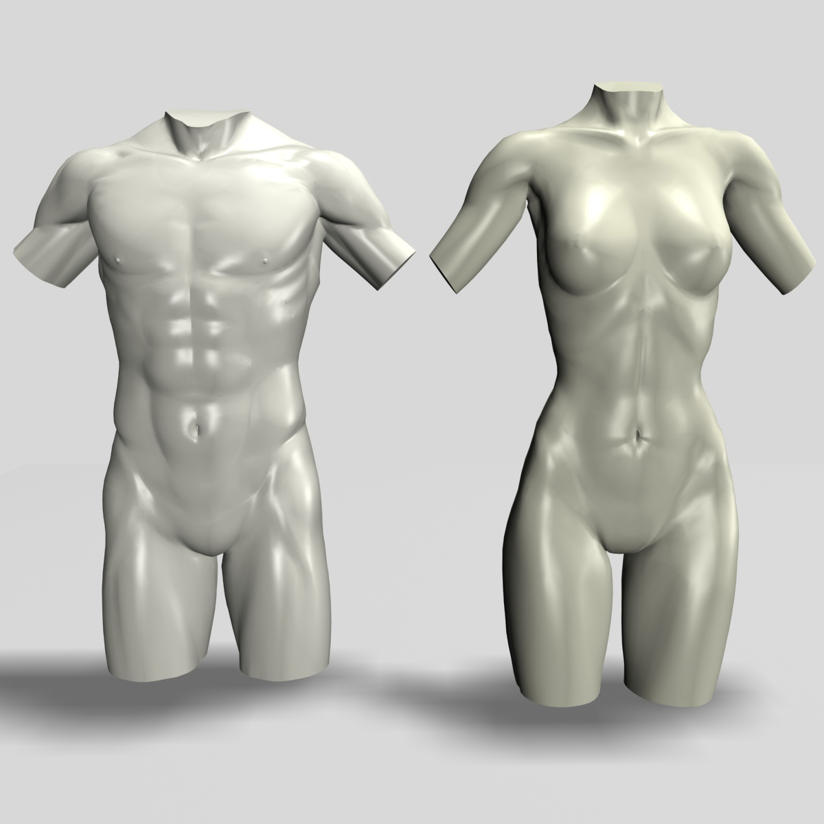 Male and Female Torso by haya3d | 3DOcean