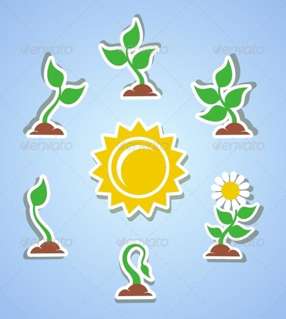Growth Progress Icons - Web Technology