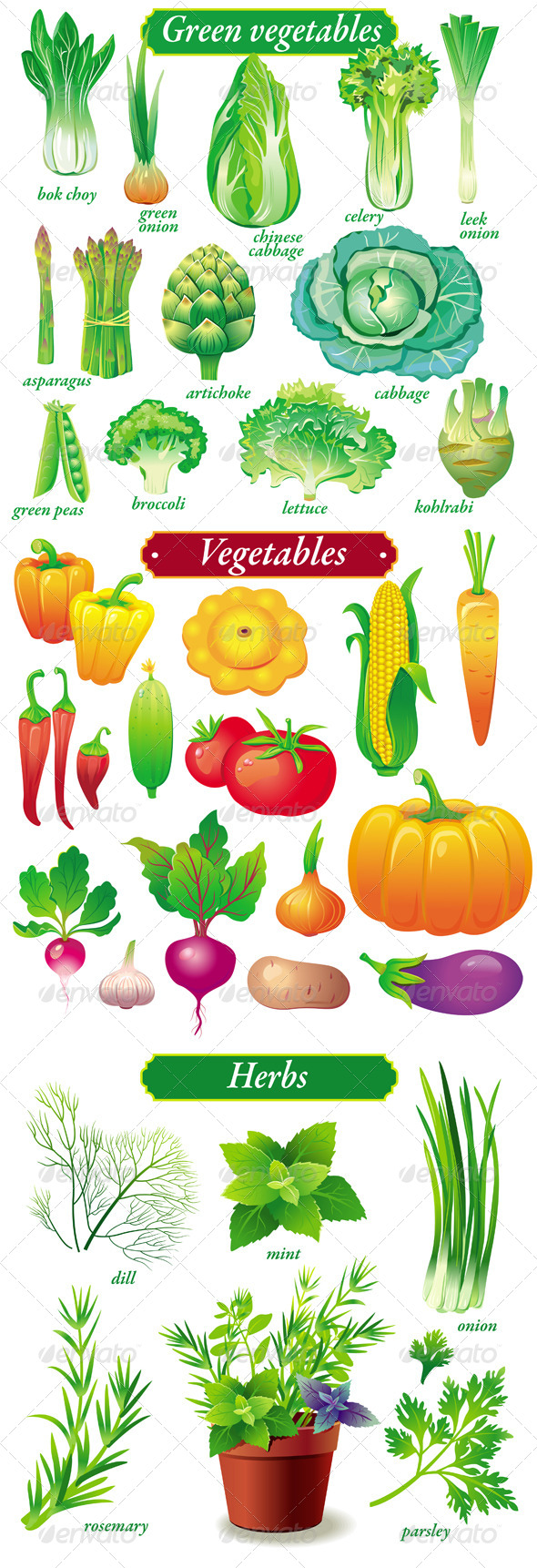 Set of Vegetables and Herbs - Food Objects