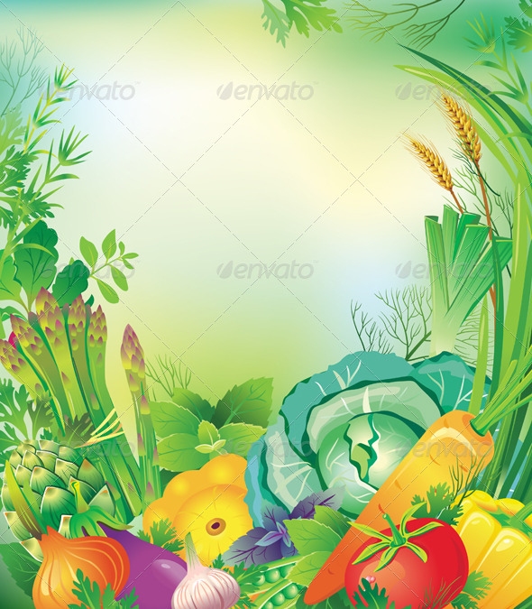 Frame of Vegetables and Herbs - Food Objects