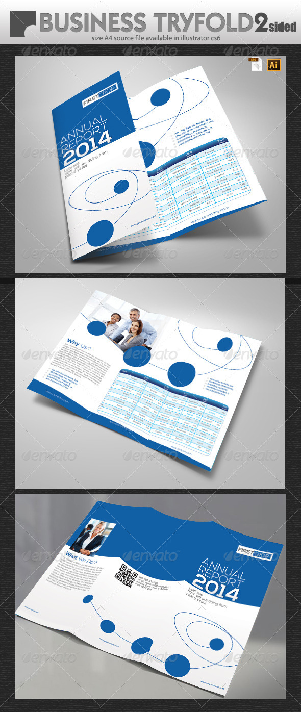 Business Report TriFold Design - Portfolio Brochures