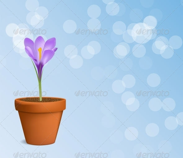 Vector Illustration of Crocus Flower - Flowers & Plants Nature
