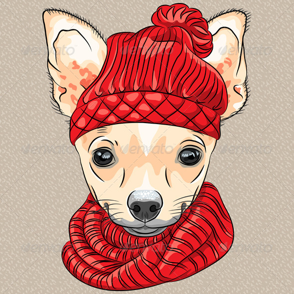 Cartoon Hipster dog Chihuahua breed Smiling - Animals Characters