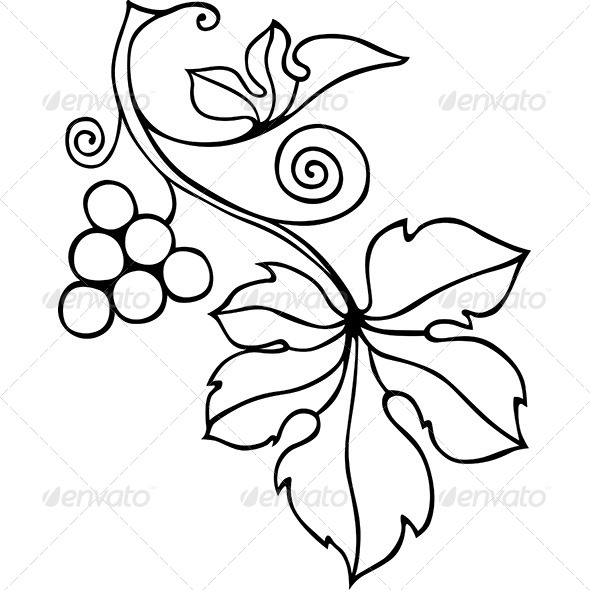 Decorative Vine Element - Flourishes / Swirls Decorative