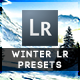 10 Winter Edition Pro Presets - GraphicRiver Item for Sale
