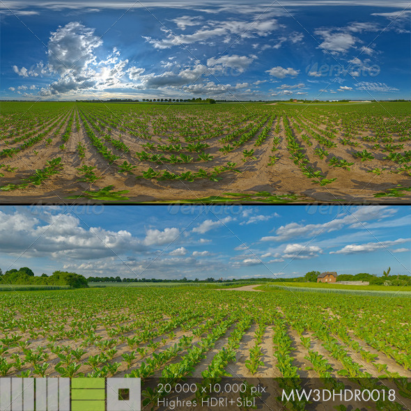 MW3DHDR0018 Agriculture Fields Summersky - 3DOcean Item for Sale