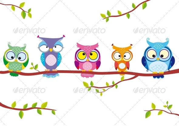 Owl Five - Animals Characters
