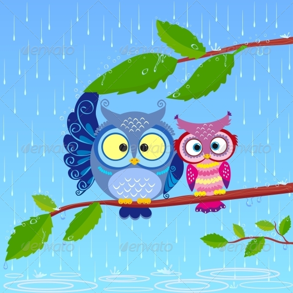 Owls in Rain - Animals Characters