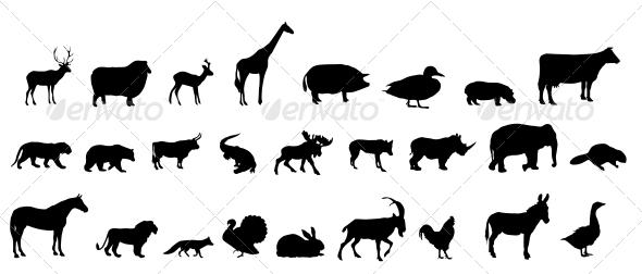 Animal Silhouettes - Web Technology