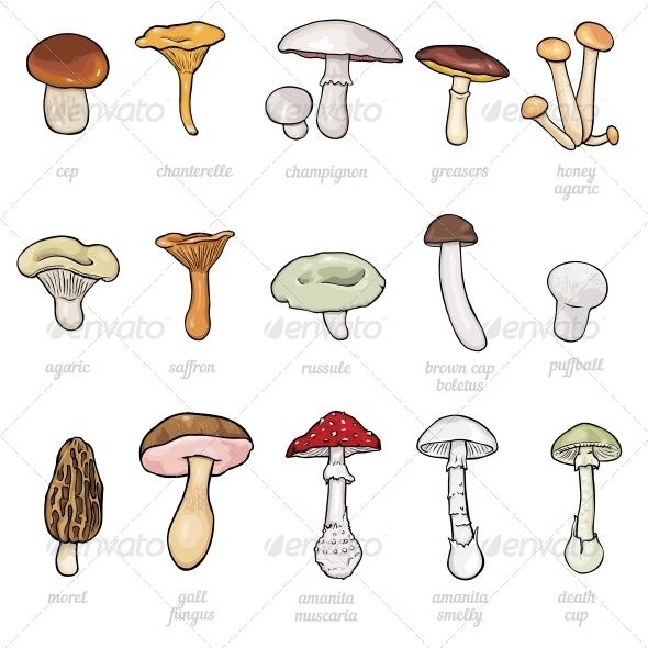 Set of Cartoon Mushrooms  - Flowers & Plants Nature