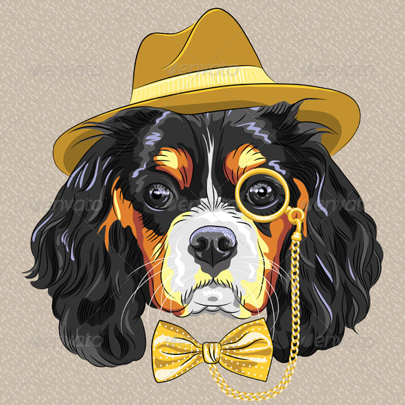 Hipster Dog King Charles Spaniel - Animals Characters