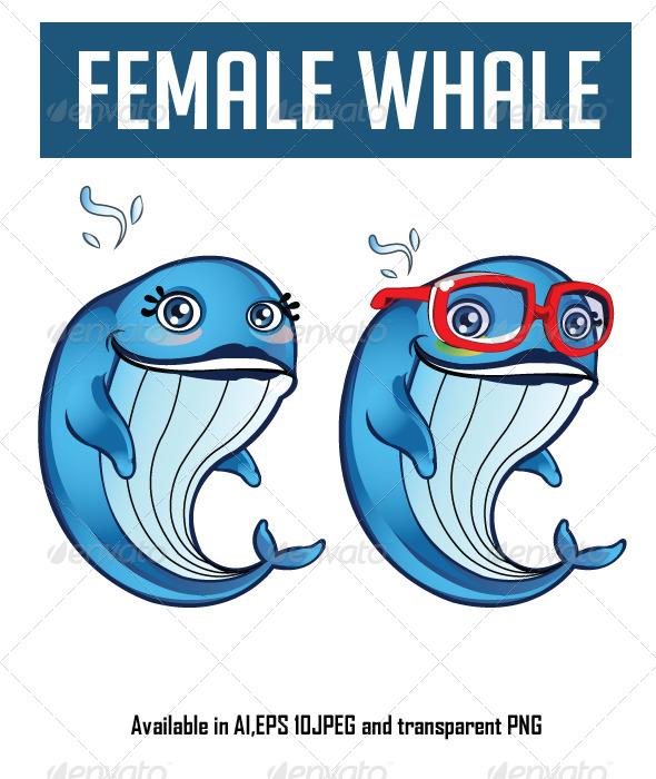 Female Whale Cartoon - Animals Characters