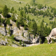 Alpine cow - VideoHive Item for Sale