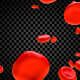Red Blood Cells - VideoHive Item for Sale