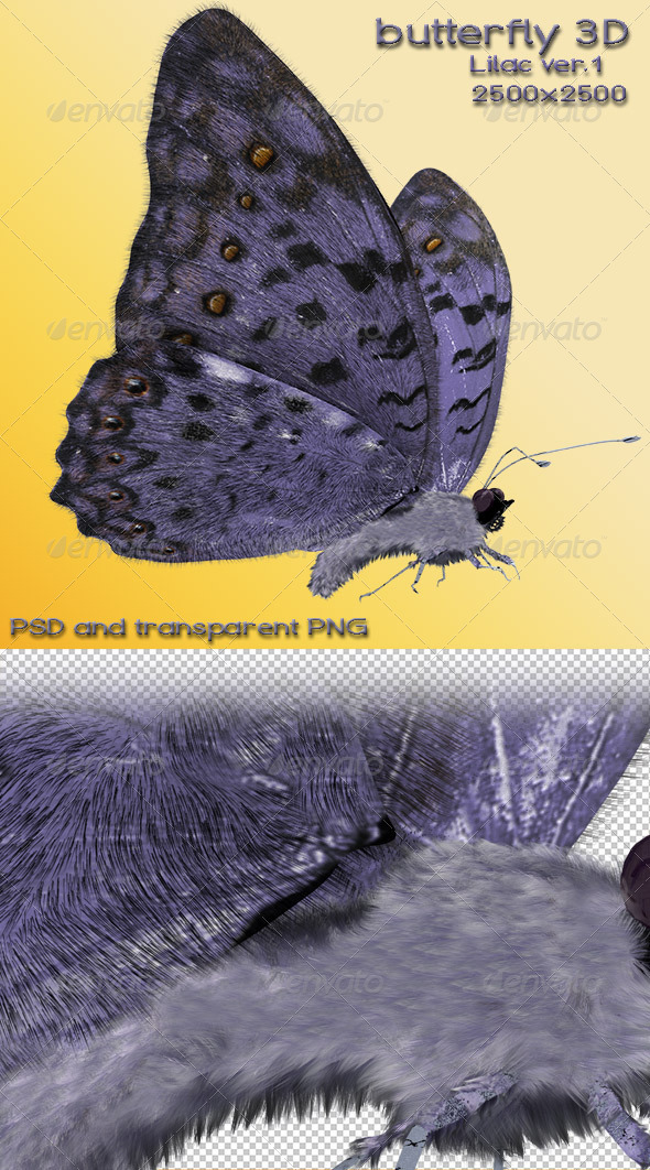 Butterfly Lilac 3D  - Miscellaneous 3D Renders