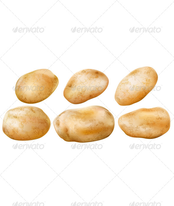 Potato Tubers - Food Objects