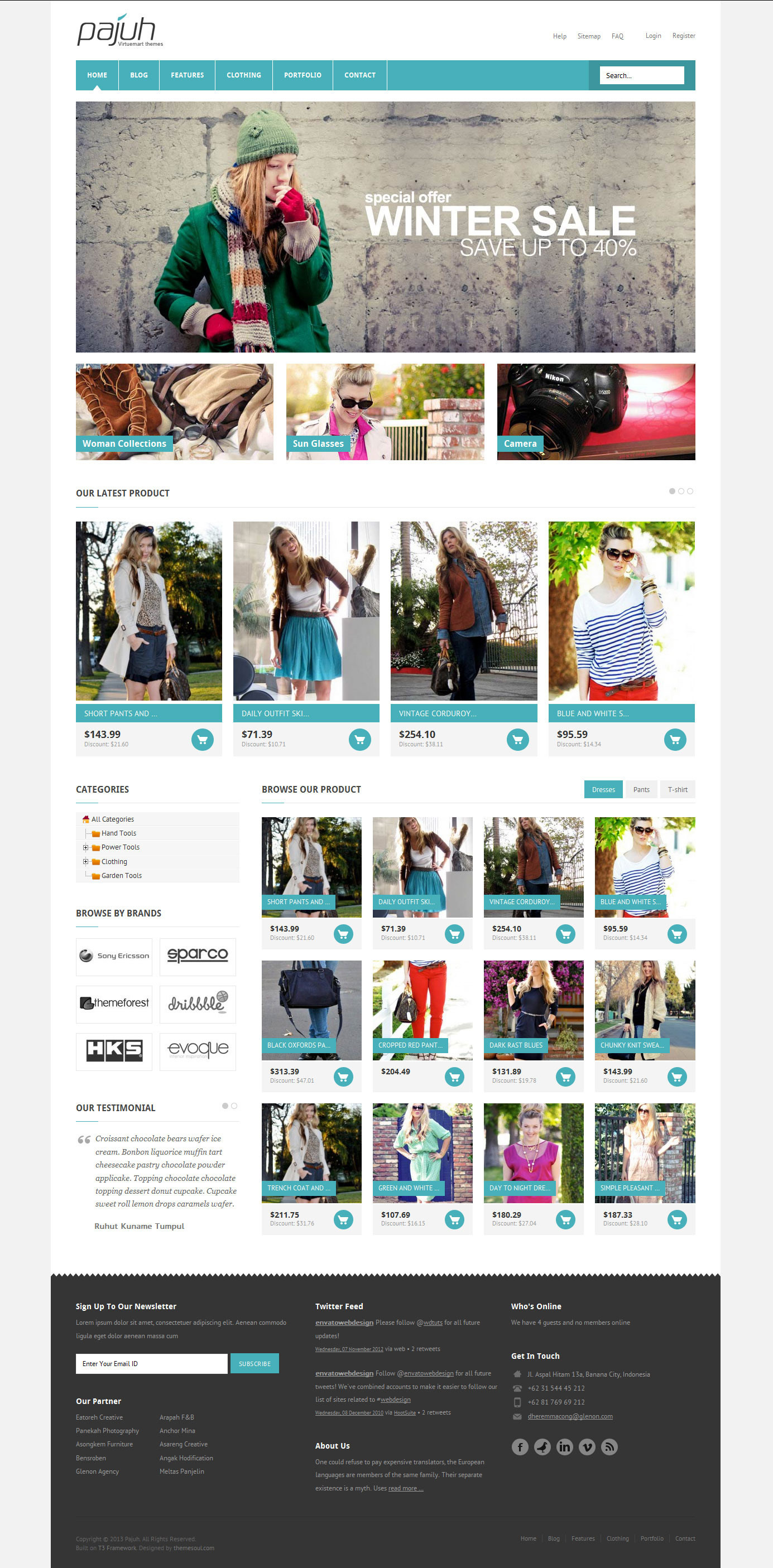 Pajuh - Clean and Responsive Magento Templates by elsnertechnologies