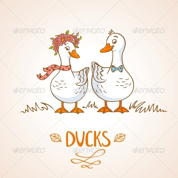 Ducks - Animals Characters