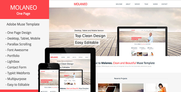 Molaneo - One Page Parallax Muse Template - Corporate Muse Templates