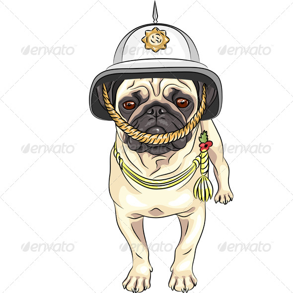 Dog Pug breed in the British helmet - Animals Characters