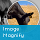 Image Magnify WordPress Plugin