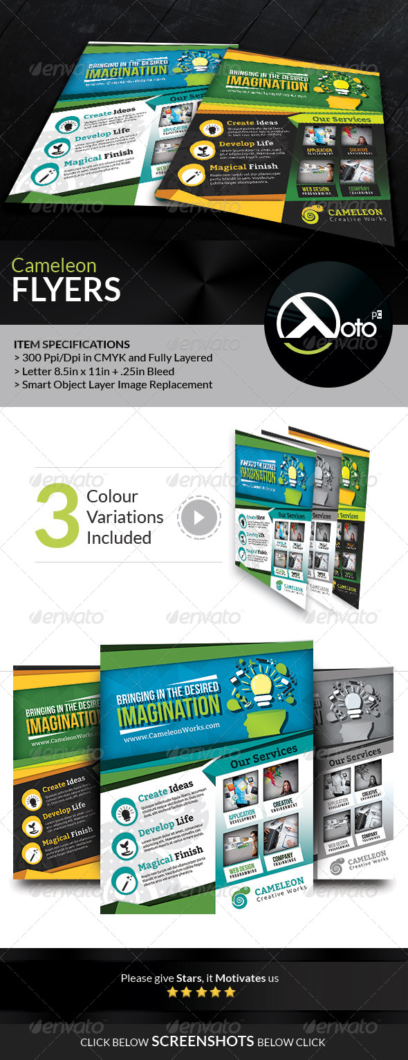 Cameleon Works Flyers - Corporate Flyers