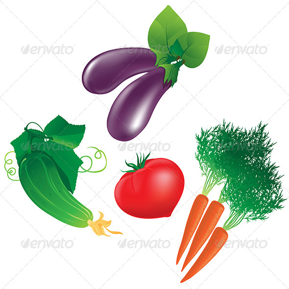 Four Different Vegetables - Organic Objects Objects