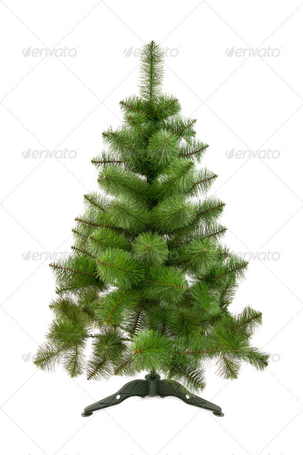 Artificial fir tree - Stock Photo - Images