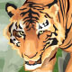 Tiger Vector - GraphicRiver Item for Sale