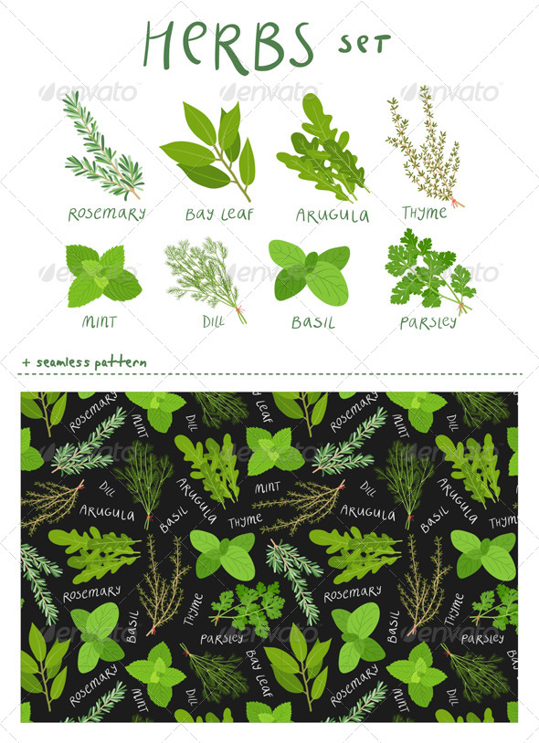 Herbs Set - Food Objects