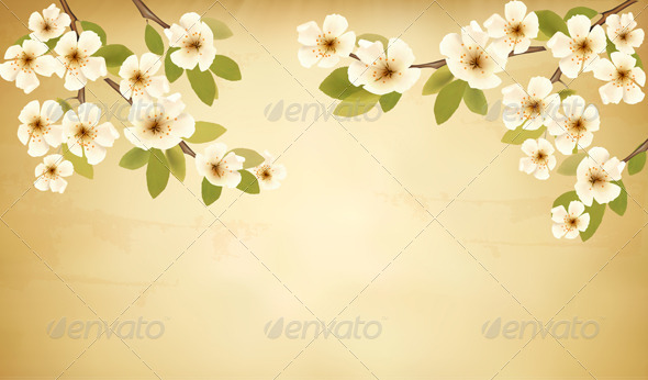 Retro Background with Blossoming Tree Branch - Flowers & Plants Nature