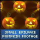 Halloween Evil Face Small Pumpkins - VideoHive Item for Sale